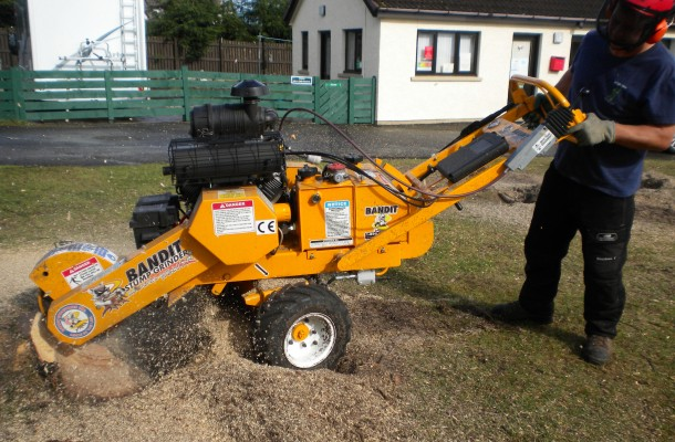 Stump Grinding / Removal